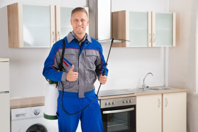Pest Control Exterminator in Illinois