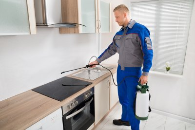 Pest Control Services in Crystal Lake, IL