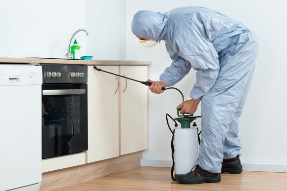 Pest Control Experts in Crystal Lake, IL