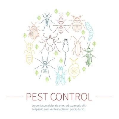 Pest Control Services by Schopen Pest Solutions
